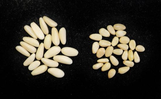 Pitkän mallisia pinjan siemeniä ja kolmiomaisia koreansembran siemeniä